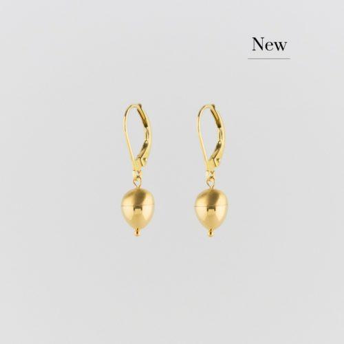 Image of golden oak nut classic earrings new